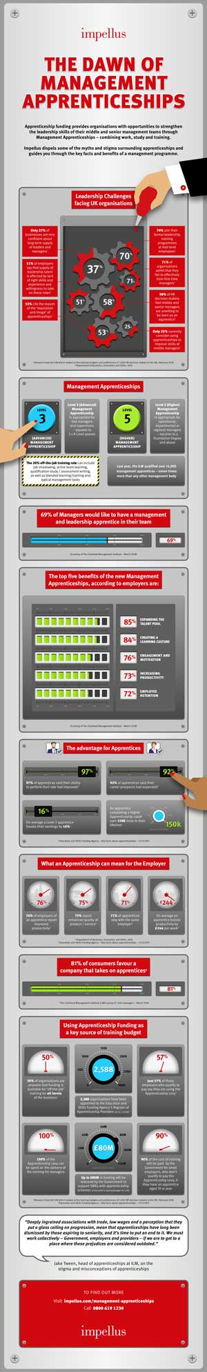 Impellus Management Apprenticeship Infographic